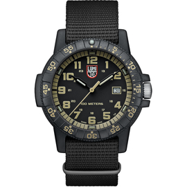 Мужские часы Luminox XS.0333, фото
