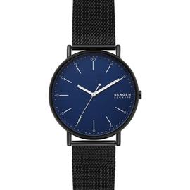 Мужские часы Skagen SKW6529, фото